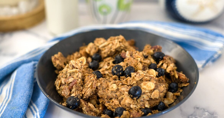 vegan blueberry granola